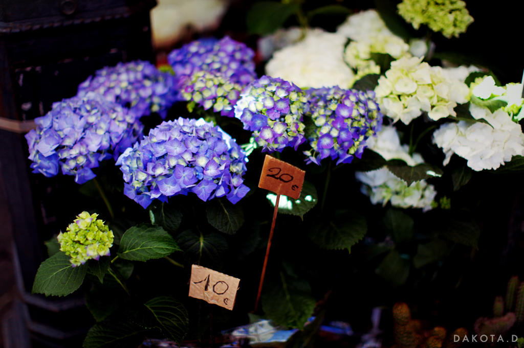 french_flower_market